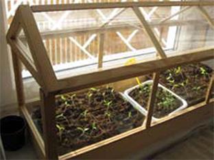 Siederlverein,Gartenarbeiten im Februar