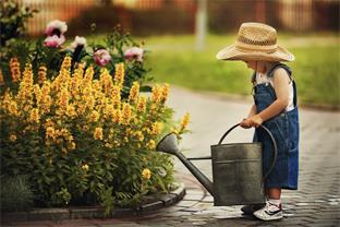 Siedlerverein Ried in der Riedmark, Frühling - Gartenarbeiten im Mai