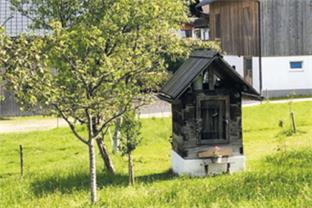 Siedlerverein St. Marienkirchen/Polsenz, Startseite - Das Dörrhüttl wird wiederentdeckt