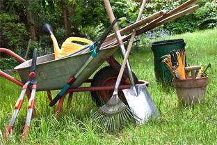 Siedlerverein Zwettl, Gartentipps - Tipps für den Rasen