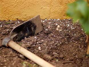 Siederlverein,Gartenarbeiten im Jänner