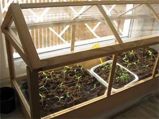 Siederlverein,Gartenarbeiten im März