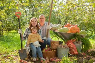 Siedlerverein Riedau, Herbst - Gartenarbeiten im Oktober