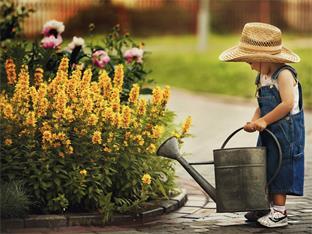 Siederlverein,Meine Gartenberatung