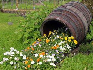 Der Garten als Quelle der Gesundheit