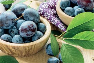 Zwetschken - die blauen Multi-Talente in der Küche