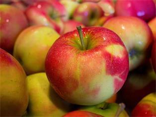 Pestizidrückstände in vielen Äpfeln